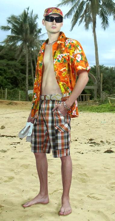 1dcb87519d06420 Мужская летняя рубашка гавайского типа. Мужские шорты в клетку ...
